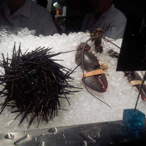 EMC-Seafood-Raw-Bar-01